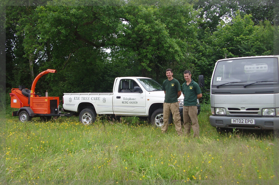 tree-maintenance-team-exeter