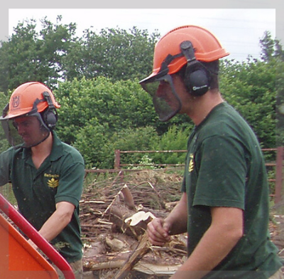 tree-surgeon-exeter