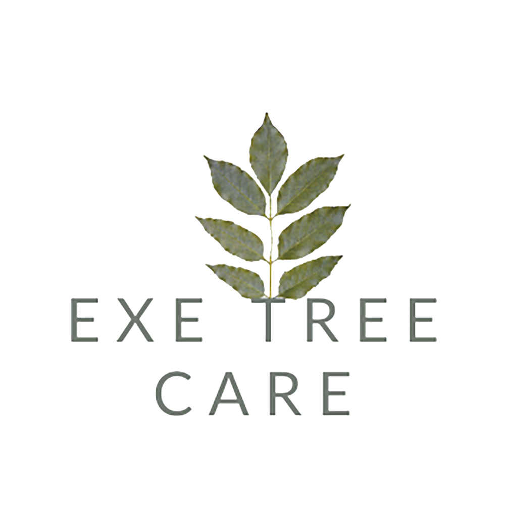 exe-tree-care-logo